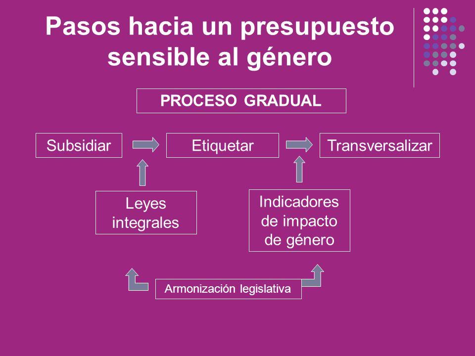 Pasos hacia un presupuesto sensible al género SubsidiarEtiquetarTransversalizar Leyes integrales Indicadores de impacto de género PROCESO GRADUAL Armo