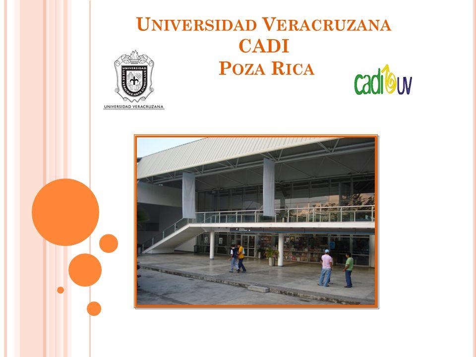 R ESULTADOS FINALES Se logró atender a 20 alumnos en riesgo de deserción del 16 de Octubre hasta el 4 de Diciembre de 2009 en diferentes sesiones principalmente presenciales.