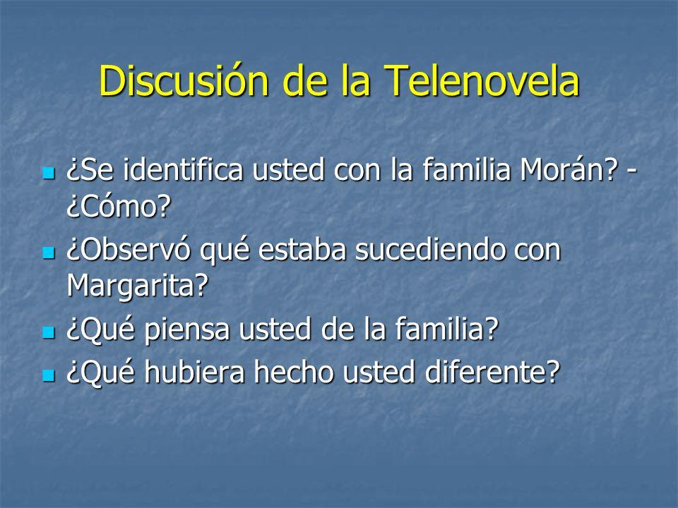 Discusión de la Telenovela ¿Se identifica usted con la familia Morán? - ¿Cómo? ¿Se identifica usted con la familia Morán? - ¿Cómo? ¿Observó qué estaba