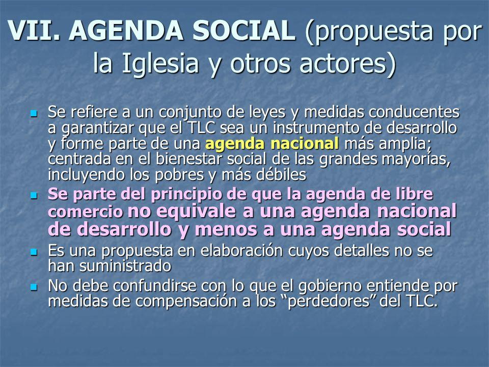 VII. AGENDA SOCIAL (propuesta por la Iglesia y otros actores) Se refiere a un conjunto de leyes y medidas conducentes a garantizar que el TLC sea un i