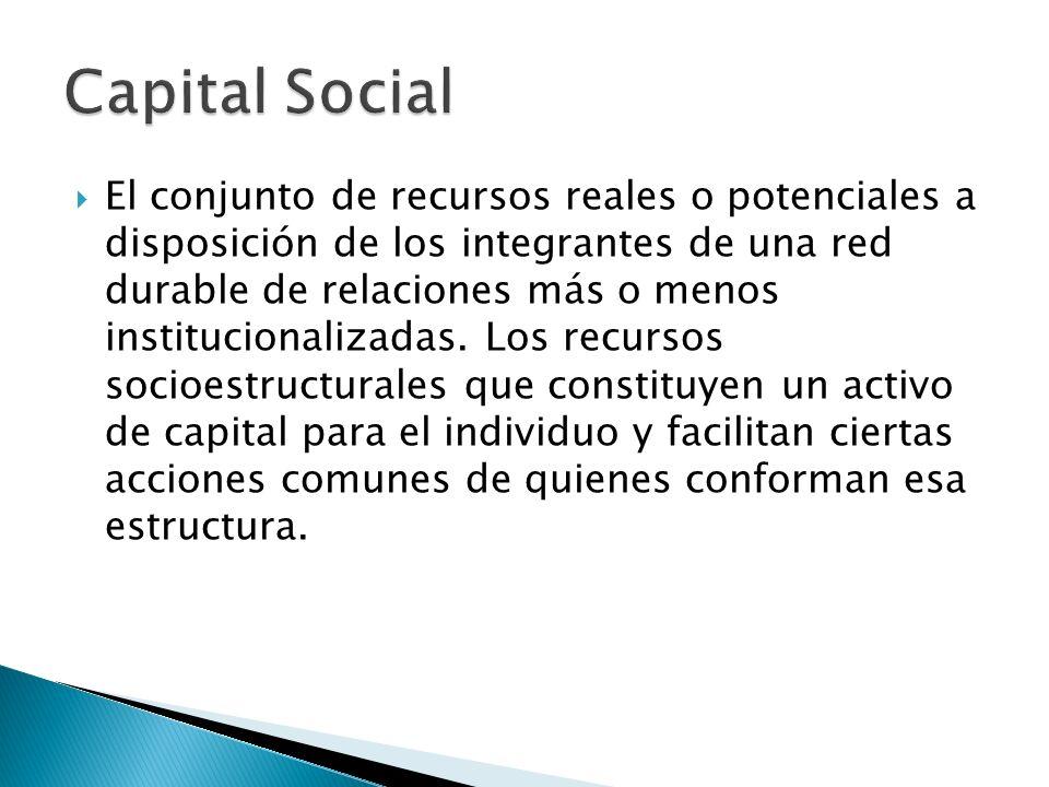 El conjunto de recursos reales o potenciales a disposición de los integrantes de una red durable de relaciones más o menos institucionalizadas. Los re