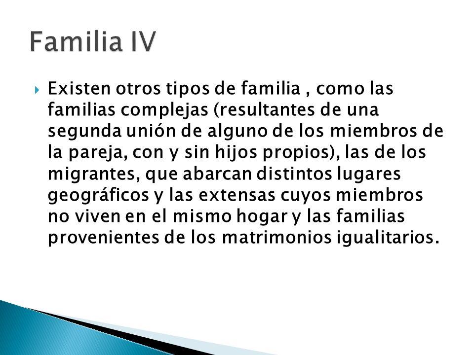 Existen otros tipos de familia, como las familias complejas (resultantes de una segunda unión de alguno de los miembros de la pareja, con y sin hijos