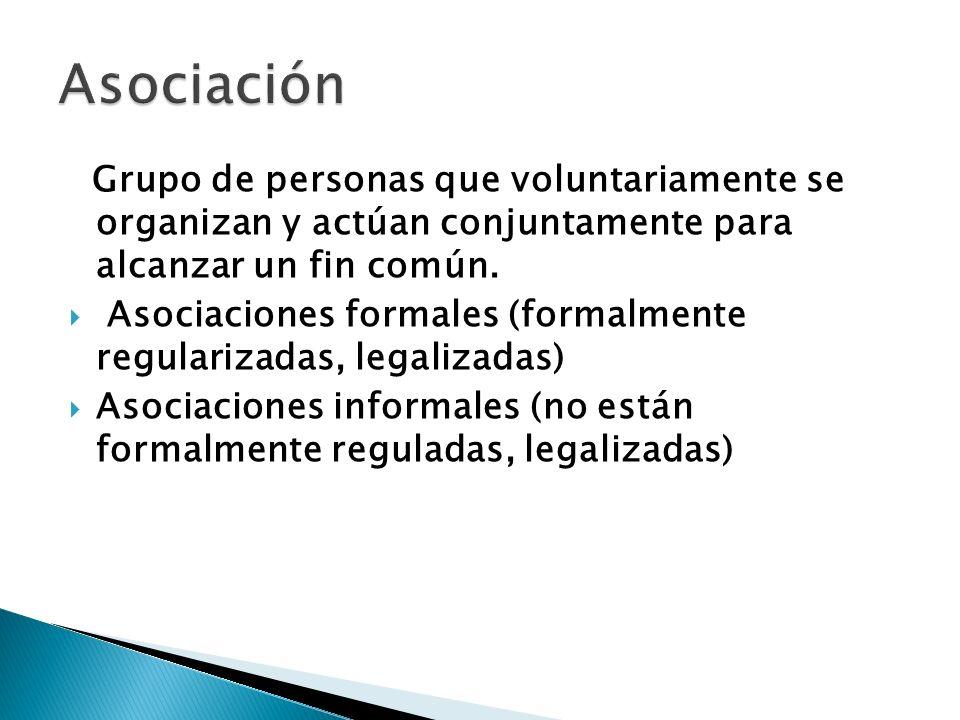Grupo de personas que voluntariamente se organizan y actúan conjuntamente para alcanzar un fin común. Asociaciones formales (formalmente regularizadas