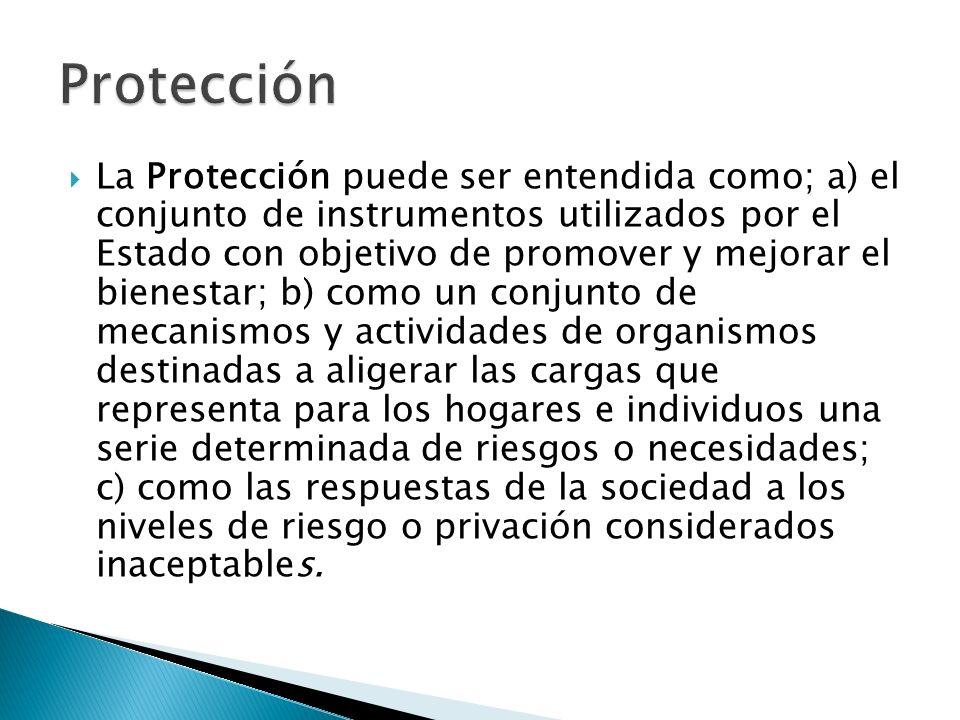 La Protección puede ser entendida como; a) el conjunto de instrumentos utilizados por el Estado con objetivo de promover y mejorar el bienestar; b) co