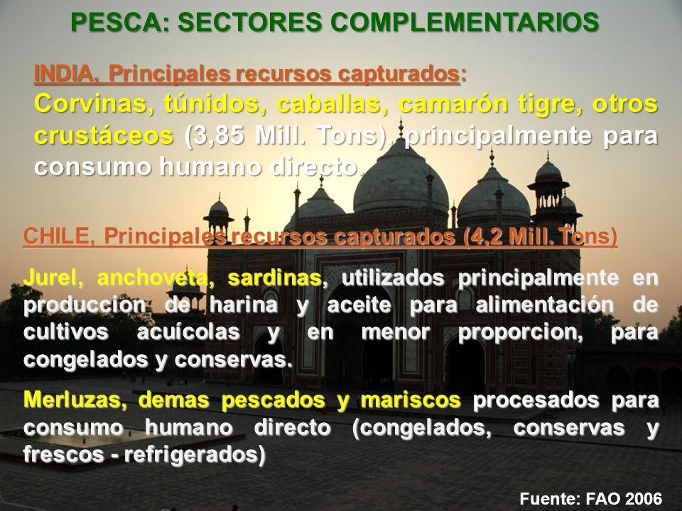 PESCA: SECTORES COMPLEMENTARIOS INDIA, Principales recursos capturados: Corvinas, túnidos, caballas, camarón tigre, otros crustáceos (3,85 Mill. Tons)