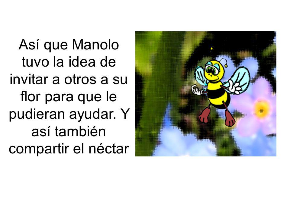 Así que Manolo tuvo la idea de invitar a otros a su flor para que le pudieran ayudar. Y así también compartir el néctar