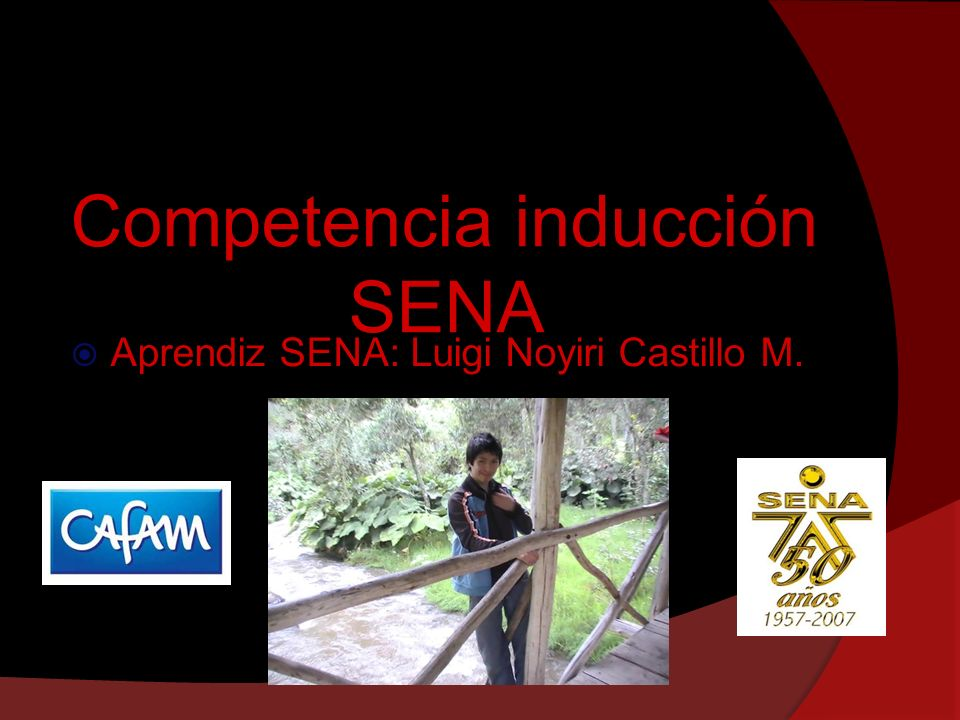 Competencia inducción SENA Aprendiz SENA: Luigi Noyiri Castillo M.