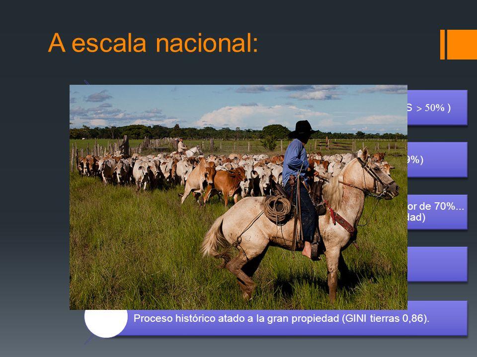 A escala nacional: Las emisiones son principalmente rurales (Agri. + USCUSS ˃ 50% ) Ganadería: principal actividad generadora de GEI (19%) Sobreutiliz