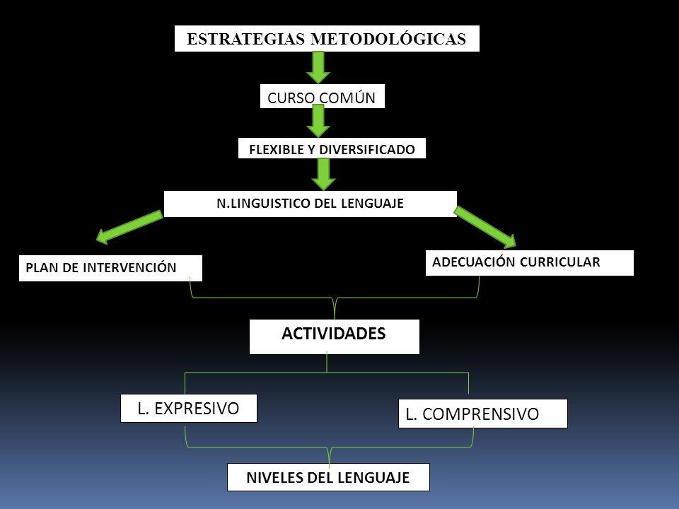 ESTRATEGIAS METODOLÓGICAS CURSO COMÚN FLEXIBLE Y DIVERSIFICADO N.LINGUISTICO DEL LENGUAJE PLAN DE INTERVENCIÓN ADECUACIÓN CURRICULAR ACTIVIDADES L. EX