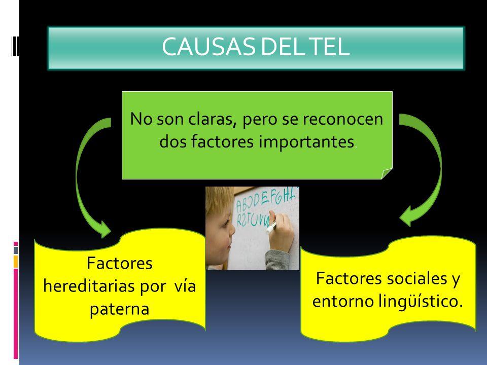 CAUSAS DEL TEL No son claras, pero se reconocen dos factores importantes. Factores hereditarias por vía paterna Factores sociales y entorno lingüístic