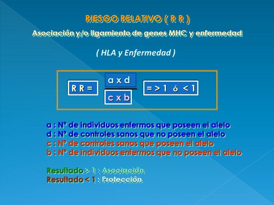 RIESGO RELATIVO ( R R ) Asociación y/o ligamiento de genes MHC y enfermedad RIESGO RELATIVO ( R R ) Asociación y/o ligamiento de genes MHC y enfermeda