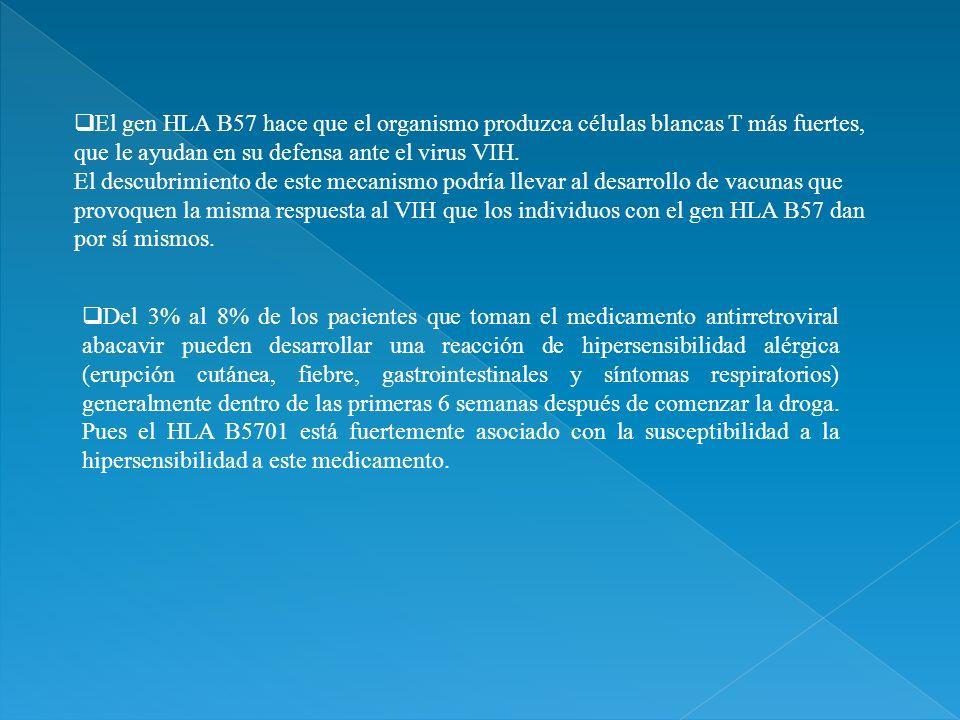 El gen HLA B57 hace que el organismo produzca células blancas T más fuertes, que le ayudan en su defensa ante el virus VIH. El descubrimiento de este