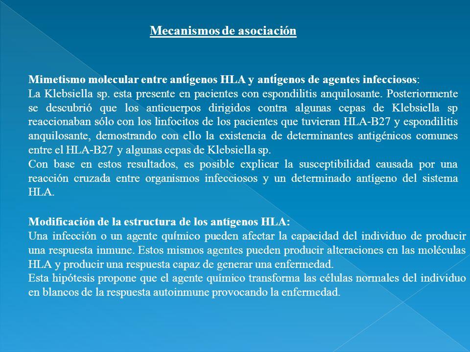 Mecanismos de asociación Mimetismo molecular entre ant í genos HLA y ant í genos de agentes infecciosos: La Klebsiella sp. esta presente en pacientes
