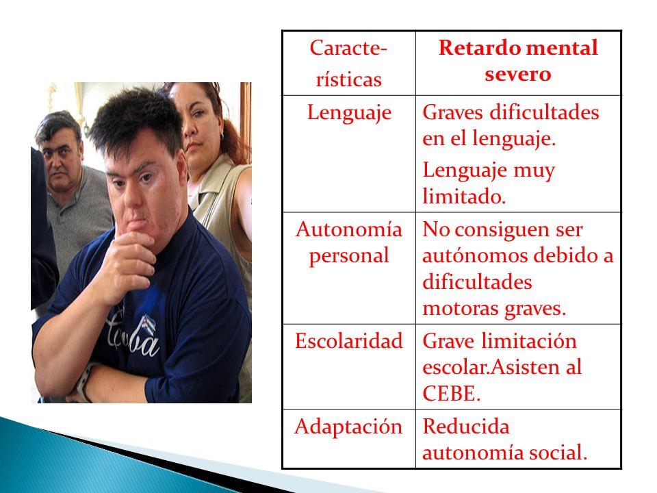 Caracte- rísticas Retardo mental severo LenguajeGraves dificultades en el lenguaje. Lenguaje muy limitado. Autonomía personal No consiguen ser autónom