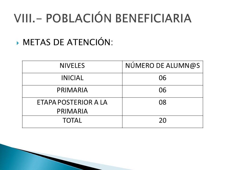 METAS DE ATENCIÓN: NIVELESNÚMERO DE ALUMN@S INICIAL06 PRIMARIA06 ETAPA POSTERIOR A LA PRIMARIA 08 TOTAL20