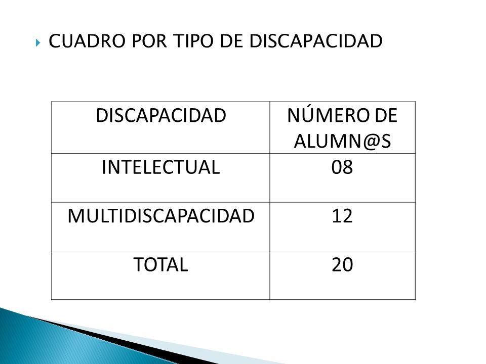 CUADRO POR TIPO DE DISCAPACIDAD DISCAPACIDADNÚMERO DE ALUMN@S INTELECTUAL08 MULTIDISCAPACIDAD12 TOTAL20