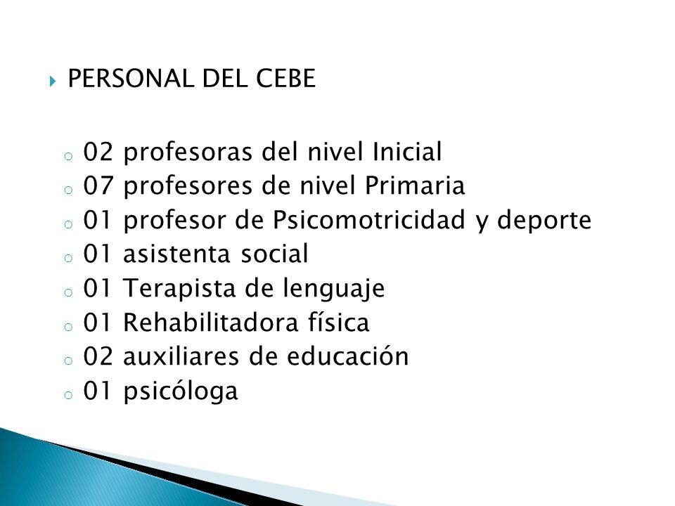 o 02 profesoras del nivel Inicial o 07 profesores de nivel Primaria o 01 profesor de Psicomotricidad y deporte o 01 asistenta social o 01 Terapista de