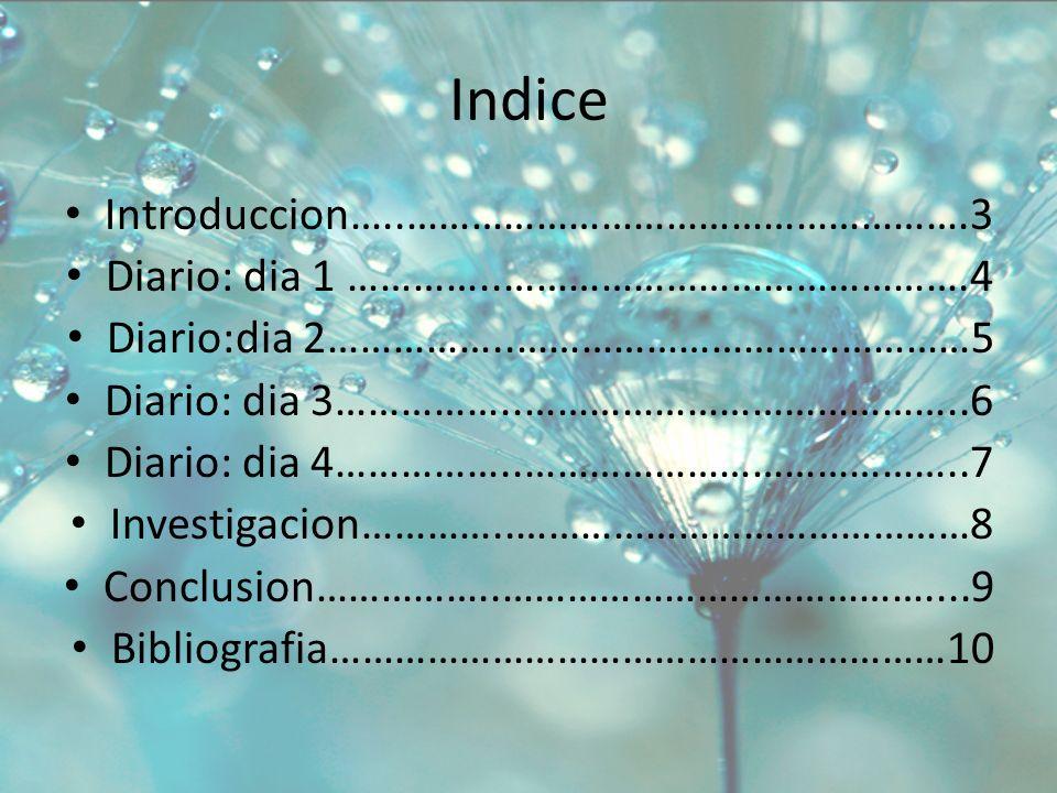 Indice Introduccion…..…………………………………………….3 Diario: dia 1 …………..…………………………………….4 Diario:dia 2……………..……………………………………5 Diario: dia 3……………..…………………………………..6 Diario: dia 4……………..…………………………………..7 Investigacion…………..……………………………………8 Conclusion……………..…………………………………....9 Bibliografia…………………………………………………10