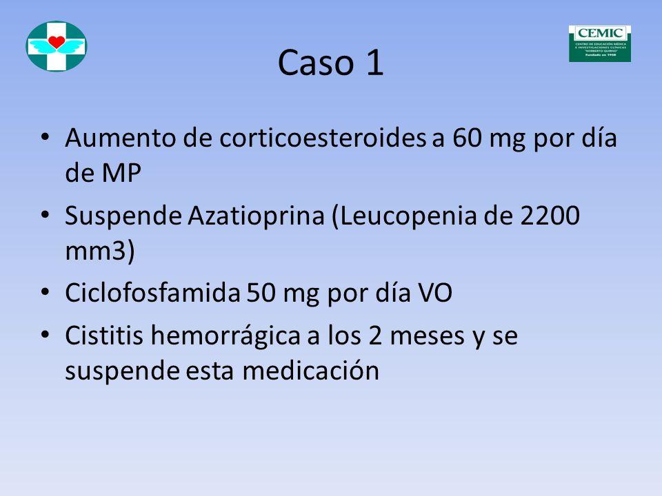 Caso 1 Diciembre de 1976 Rash Fotosensibilidad Proteinuria 3 g 24 hs Sedimento urinario patológico Hipertensión arterial 150-95 mmHg