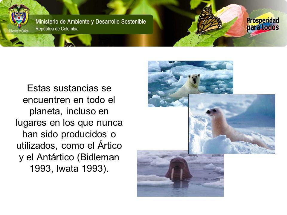 Estas sustancias se encuentren en todo el planeta, incluso en lugares en los que nunca han sido producidos o utilizados, como el Ártico y el Antártico