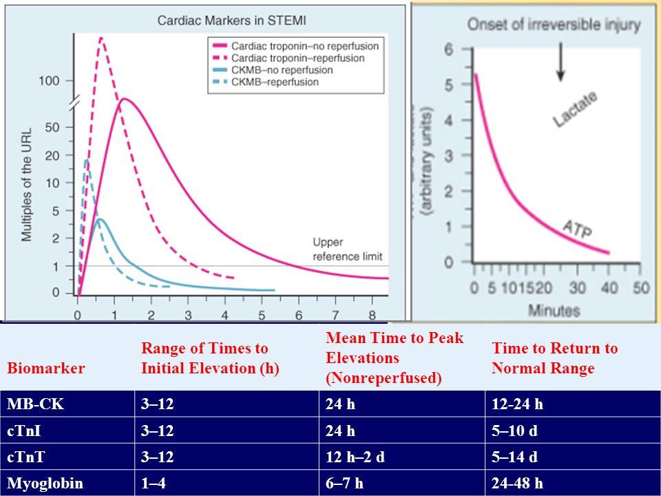 Biomarker Range of Times to Initial Elevation (h) Mean Time to Peak Elevations (Nonreperfused) Time to Return to Normal Range MB-CK3–1224 h12-24 h cTn