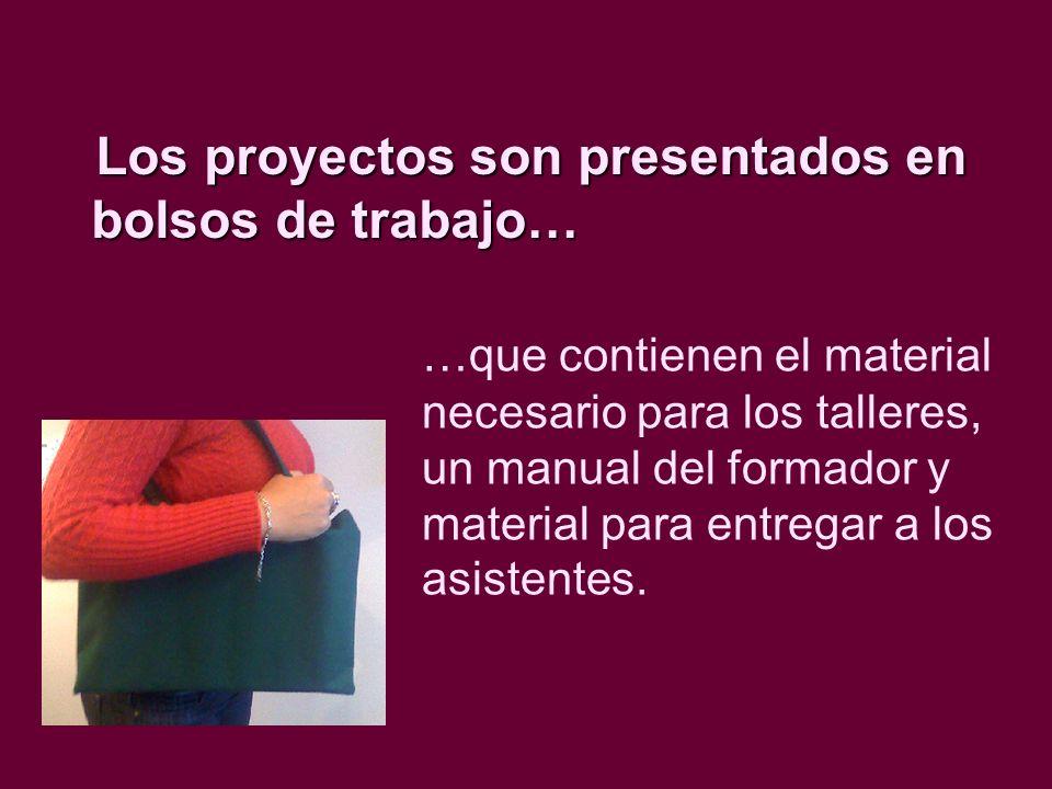 Características de cada proyecto Se presenta en un bolso de trabajo.