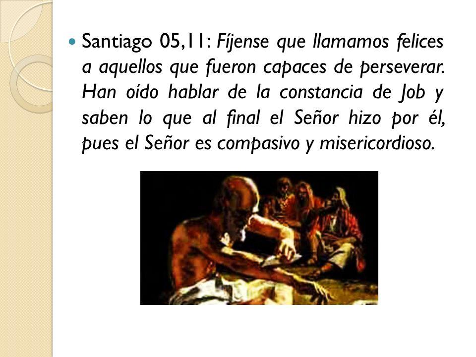 Santiago 05,11: Fíjense que llamamos felices a aquellos que fueron capaces de perseverar. Han oído hablar de la constancia de Job y saben lo que al fi