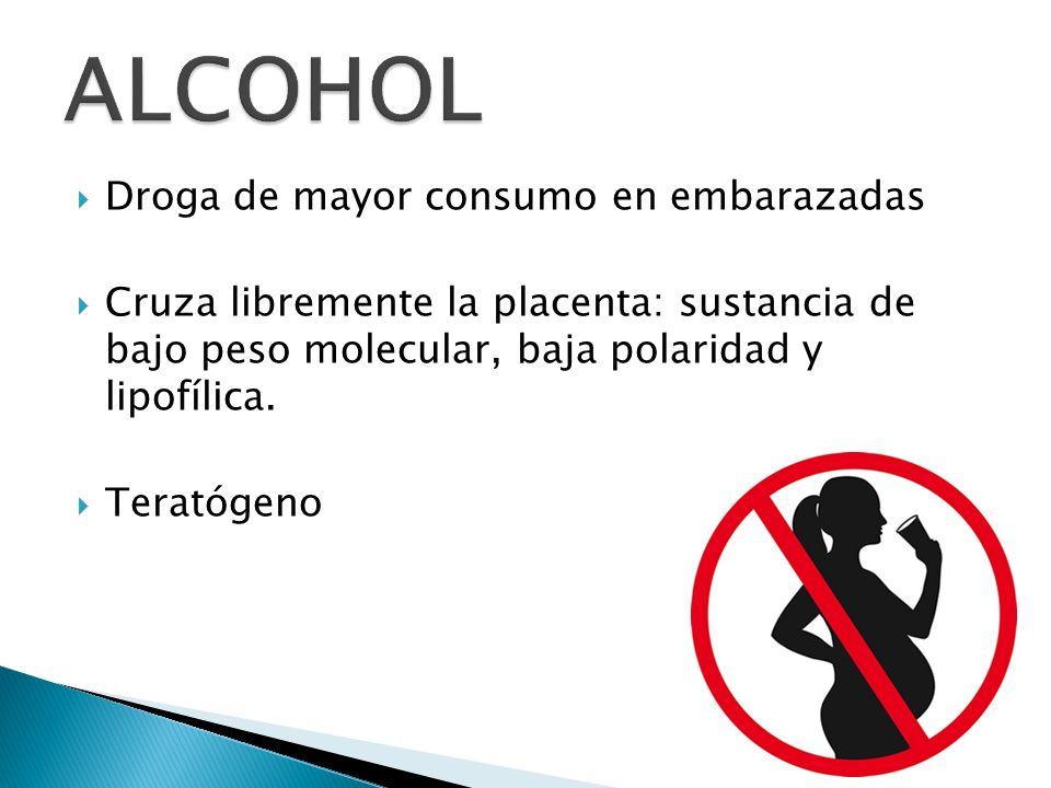 Droga de mayor consumo en embarazadas Cruza libremente la placenta: sustancia de bajo peso molecular, baja polaridad y lipofílica. Teratógeno