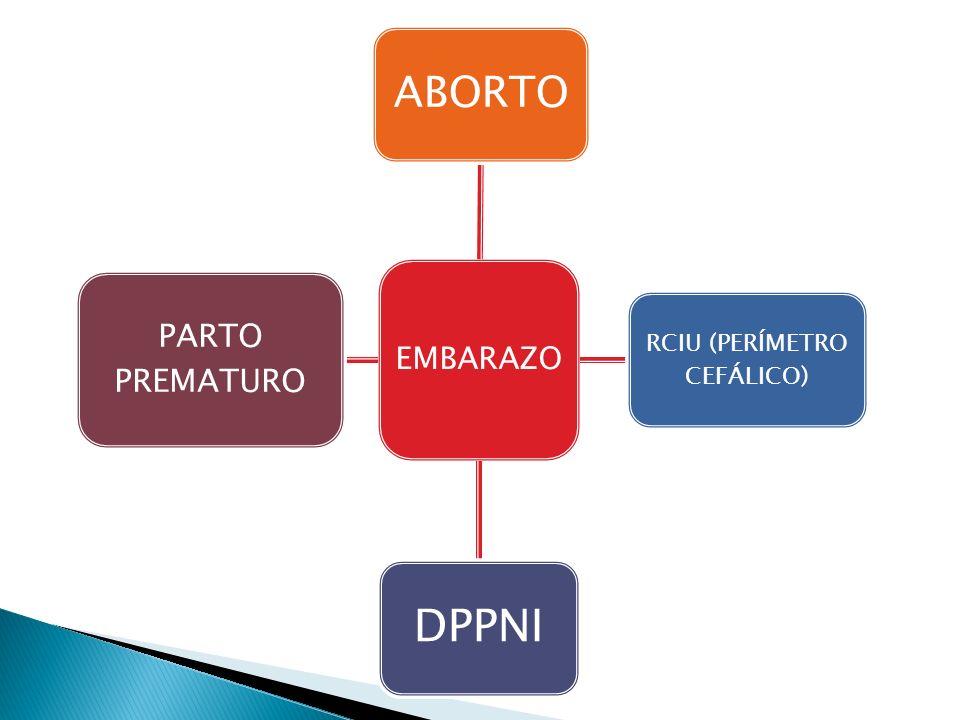 EMBARAZO ABORTO RCIU (PERÍMETRO CEFÁLICO) DPPNI PARTO PREMATURO