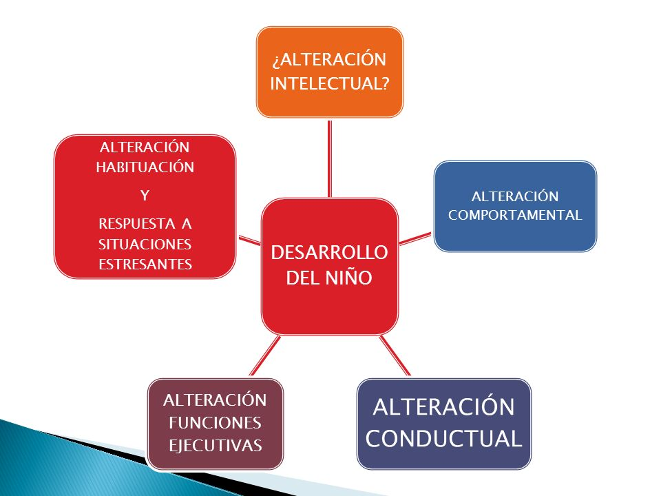 DESARROLLO DEL NIÑO ¿ALTERACIÓN INTELECTUAL? ALTERACIÓN COMPORTAMENTAL ALTERACIÓN CONDUCTUAL ALTERACIÓN FUNCIONES EJECUTIVAS ALTERACIÓN HABITUACIÓN Y