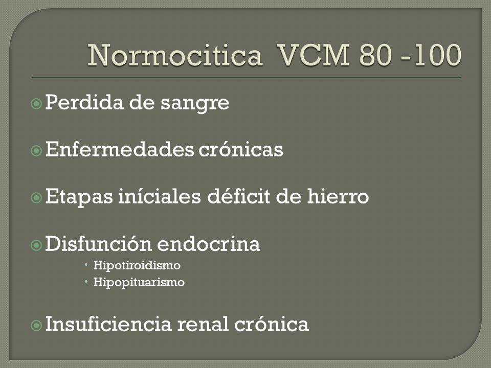 Perdida de sangre Enfermedades crónicas Etapas iníciales déficit de hierro Disfunción endocrina Hipotiroidismo Hipopituarismo Insuficiencia renal crón