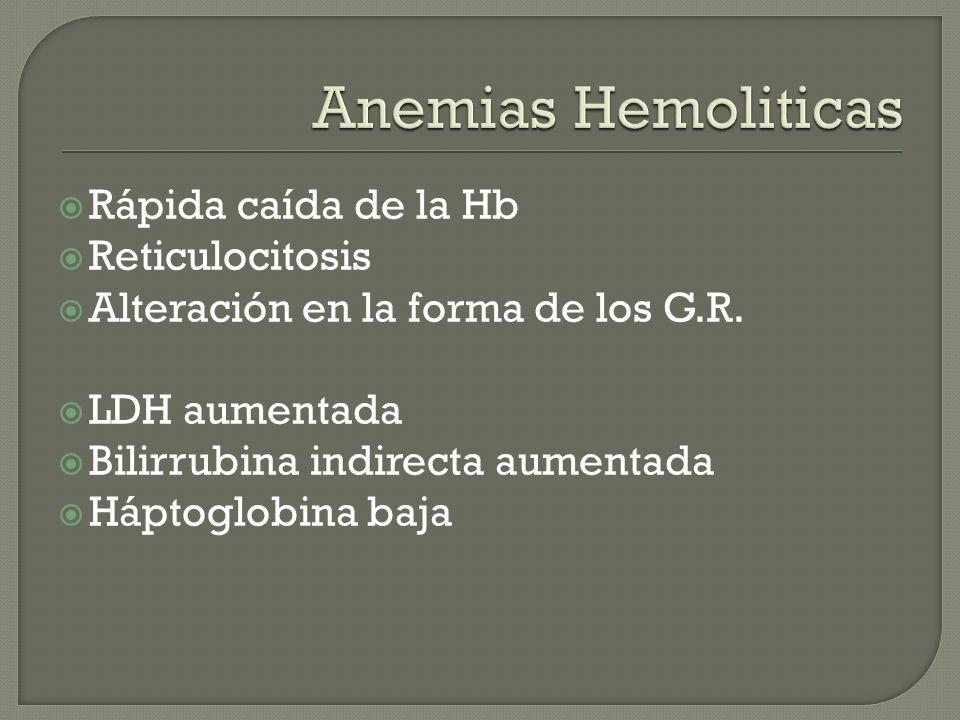 Rápida caída de la Hb Reticulocitosis Alteración en la forma de los G.R. LDH aumentada Bilirrubina indirecta aumentada Háptoglobina baja
