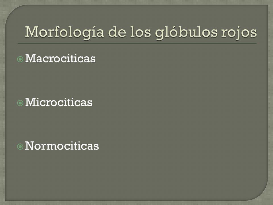Macrociticas Microciticas Normociticas