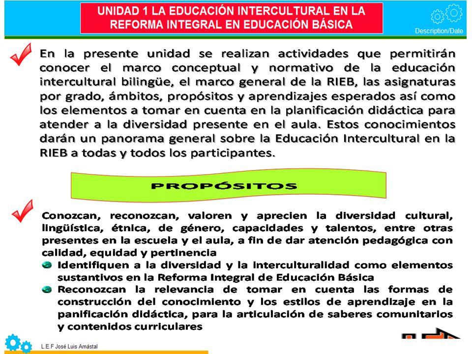 ELEMENTOS PARA LA EVALUACIÓN EN EL DESARROLLO DE COMPETENCIAS CONTENIDO 1.