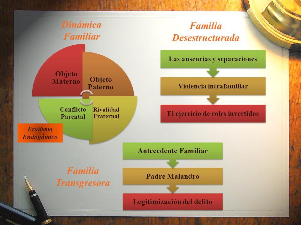 Dinámica Familiar Objeto Materno Objeto Paterno Rivalidad Fraternal Conflicto Parental Erotismo Endogámico El ejercicio de roles invertidos Violencia