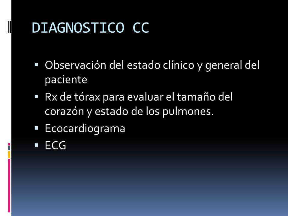 DIAGNOSTICO CC Observación del estado clínico y general del paciente Rx de tórax para evaluar el tamaño del corazón y estado de los pulmones. Ecocardi