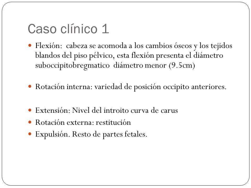 Caso clínico 1 Flexión: cabeza se acomoda a los cambios óseos y los tejidos blandos del piso pélvico, esta flexión presenta el diámetro suboccipitobregmatico diámetro menor (9.5cm) Rotación interna: variedad de posición occipito anteriores.