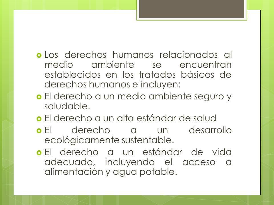 Los derechos humanos relacionados al medio ambiente se encuentran establecidos en los tratados básicos de derechos humanos e incluyen: El derecho a un