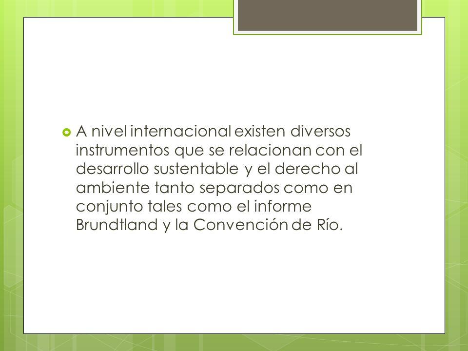 A nivel internacional existen diversos instrumentos que se relacionan con el desarrollo sustentable y el derecho al ambiente tanto separados como en c