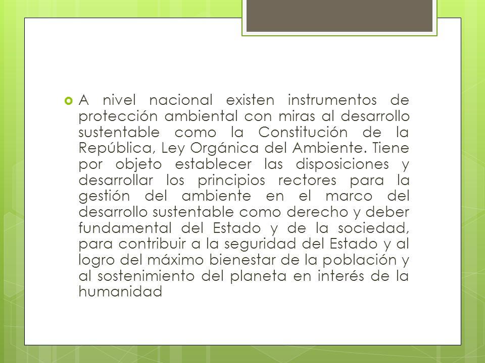 A nivel nacional existen instrumentos de protección ambiental con miras al desarrollo sustentable como la Constitución de la República, Ley Orgánica d