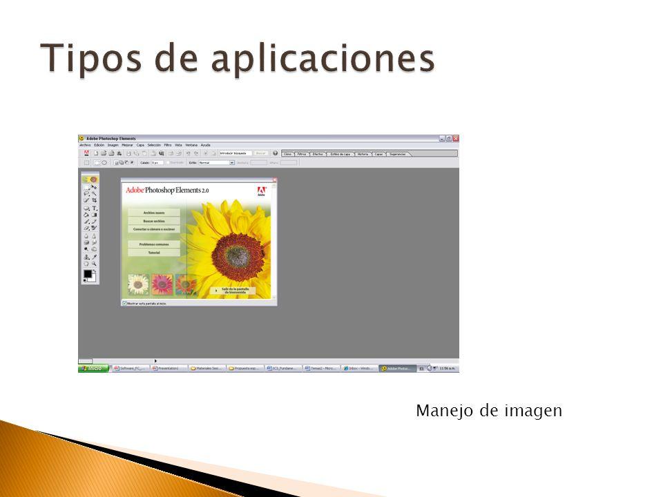 Adobe Photoshop (Edición y retoque de imágenes). Adobe Illustrator (Ilustraciones con trazos vectoriales). Flash (Animación y generación de recursos W