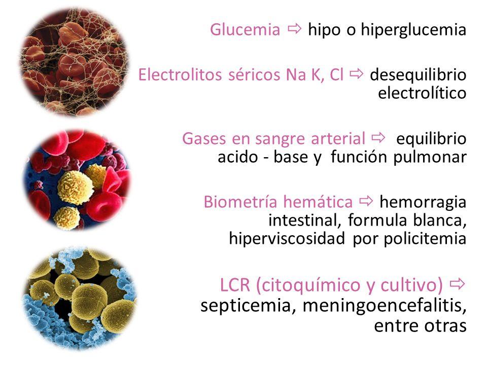 Glucemia hipo o hiperglucemia Electrolitos séricos Na K, Cl desequilibrio electrolítico Gases en sangre arterial equilibrio acido - base y función pul