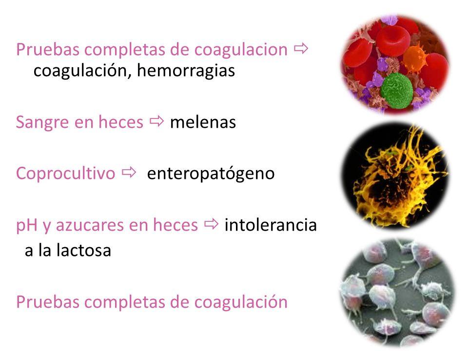 Pruebas completas de coagulacion coagulación, hemorragias Sangre en heces melenas Coprocultivo enteropatógeno pH y azucares en heces intolerancia a la