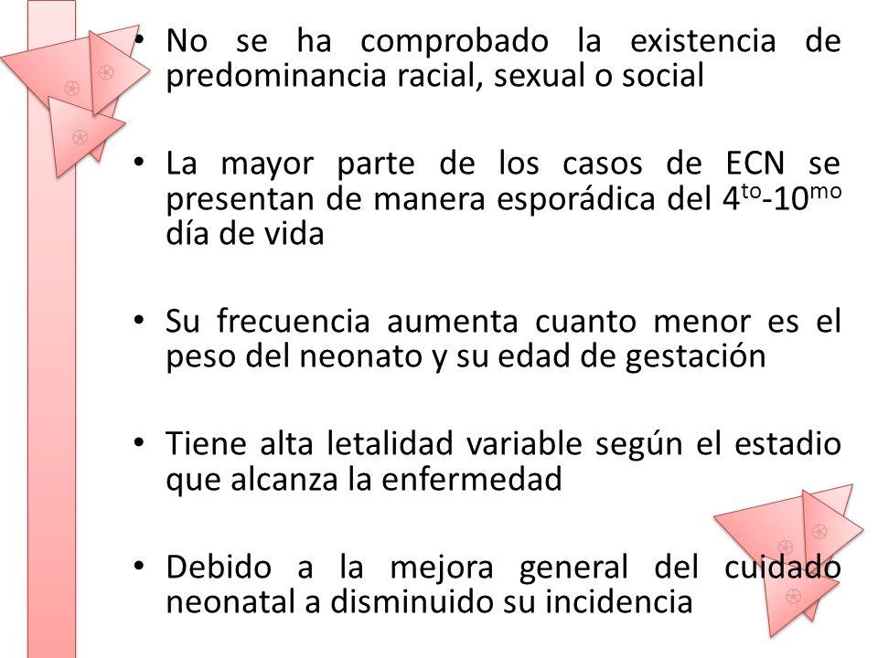 No se ha comprobado la existencia de predominancia racial, sexual o social La mayor parte de los casos de ECN se presentan de manera esporádica del 4