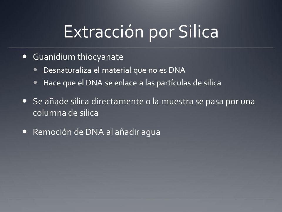Extracción por Silica Guanidium thiocyanate Desnaturaliza el material que no es DNA Hace que el DNA se enlace a las partículas de silica Se añade sili