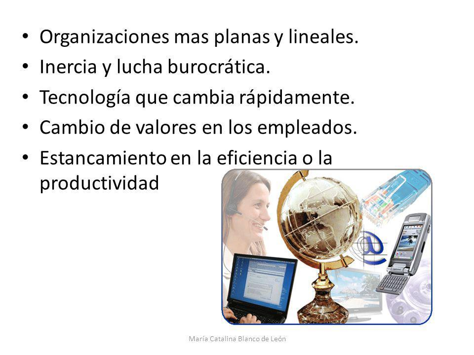 Organizaciones mas planas y lineales. Inercia y lucha burocrática. Tecnología que cambia rápidamente. Cambio de valores en los empleados. Estancamient