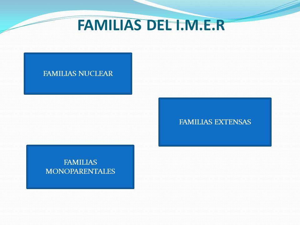FAMILIAS DEL I.M.E.R FAMILIAS NUCLEAR FAMILIAS EXTENSAS FAMILIAS MONOPARENTALES