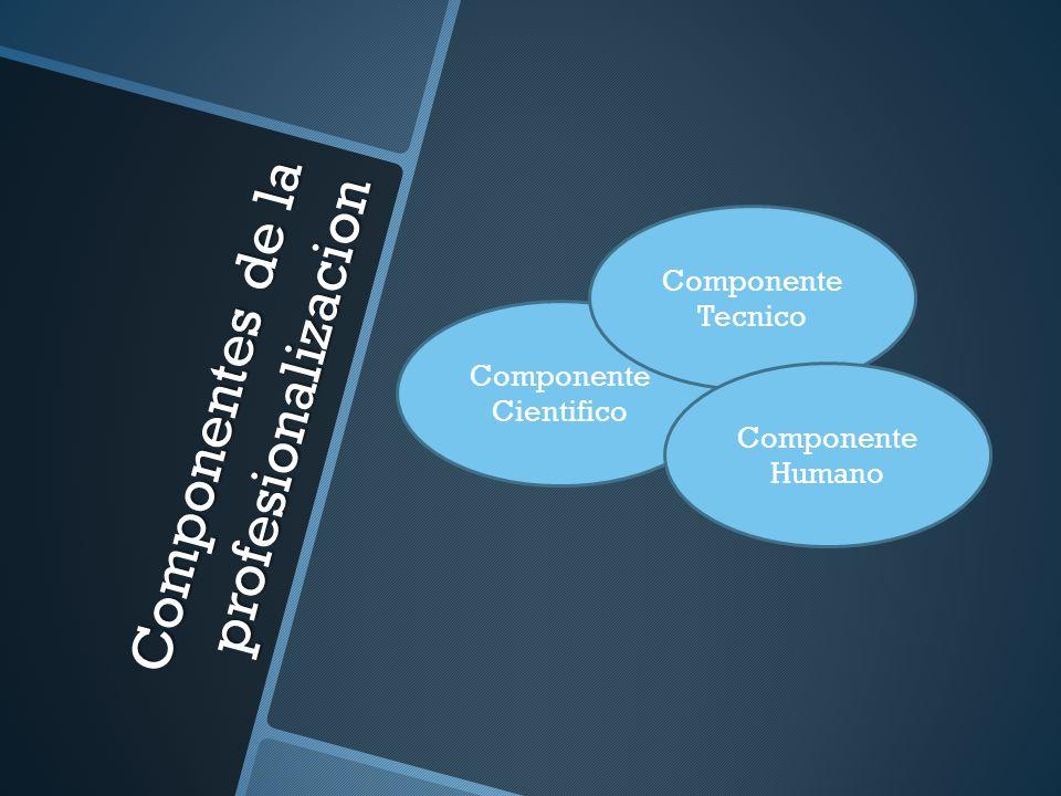 Componentes de la profesionalizacion Componente Cientifico Componente Tecnico Componente Humano