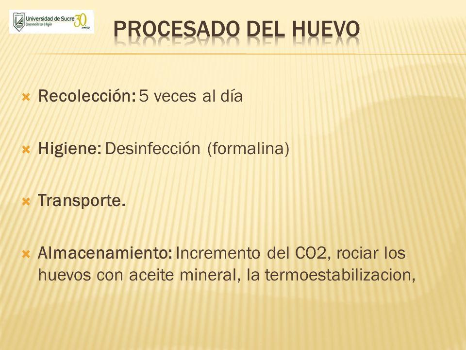 Recolección: 5 veces al día Higiene: Desinfección (formalina) Transporte. Almacenamiento: Incremento del CO2, rociar los huevos con aceite mineral, la