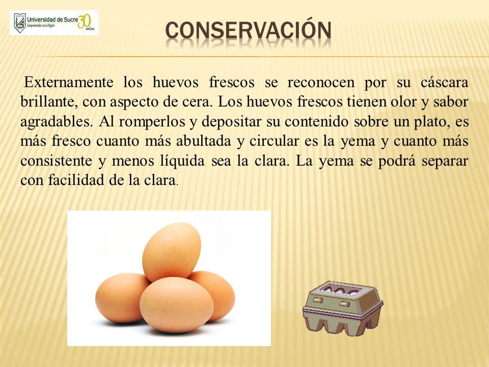 Externamente los huevos frescos se reconocen por su cáscara brillante, con aspecto de cera. Los huevos frescos tienen olor y sabor agradables. Al romp